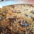 paella alcachofa sepia